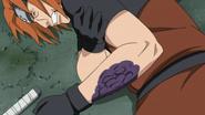 Rinkaichū destroying Fū's cells