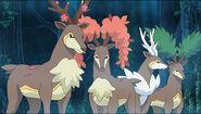 Sawsbuck (Pokémon) seasons