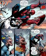 Spiderman Vein Web