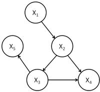 General causal model