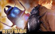 Char beetle