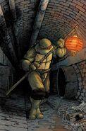 Donatello (IDW Teenage Mutant Ninja Turtles) profile