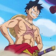 Monkey D Luffy Peak