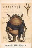 Goblins Spiderwick