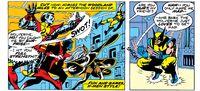 Durability by Wolverine