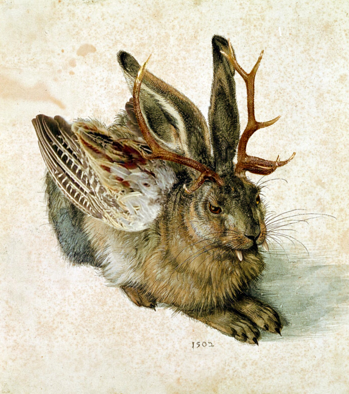 Wolpertinger Physiology