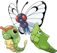 Caterpie Evolutions