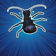Jolly Beetles