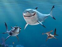 Finding Nemo(16)