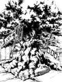Giant Tree Yggdrasil