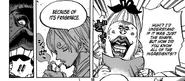 Sanji sharp sense of smell