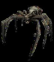 Demon Spider LoK