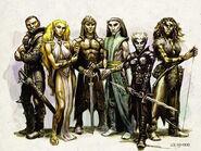 Elves 2