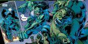 She Hulk vs Devil Hulk