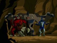 Underground Creatures