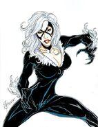 Black Cat Marvel