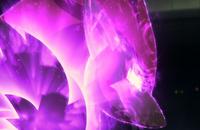 Zoroark - Illusion