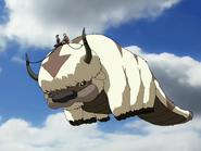 Appa flying