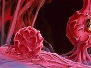 Parasite Inside Buu