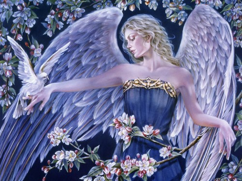 Thrones Angel Physiology