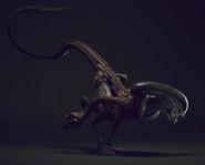 Xenomorph Runner