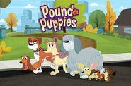 PoundPuppies2010TVT 8017