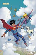 Superboy Flight Field