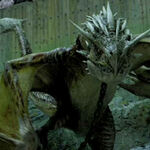 Horntail Dragon Harry Potter.jpg