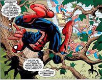 Enhanced Agility by Spider-Man