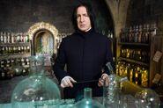 Severus Potions