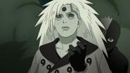 Black Zetsu stabs Madara (Naruto)