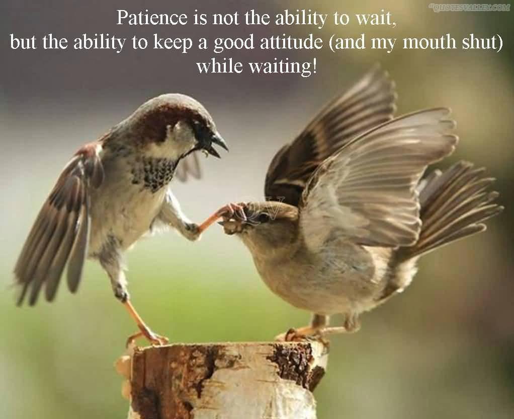 Patience Manipulation