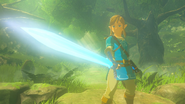 BotW Link Master Sword Full Power