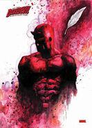 Daredevil-marvel-comics-14713833-307-425