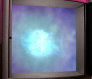 Quantum singularity lifeforms young