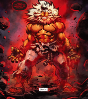 Street Fighter- Akuma vs. Hell Shin Akuma