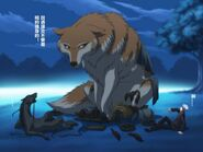 Holo (Spice and Wolf) wolf