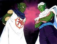 Piccolo and Kami Life Link