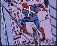 Spiderman Tightrope