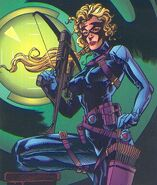 Huntress (Amalgam Comics)