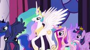 Alicorns in My Little Pony Friendship is Magic