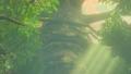 BotW The Great Deku Tree Model