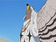 Pell full Falcon form