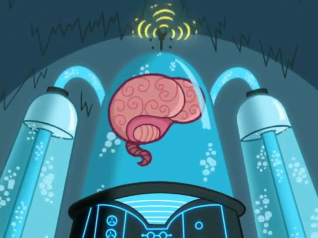 Brain Creation