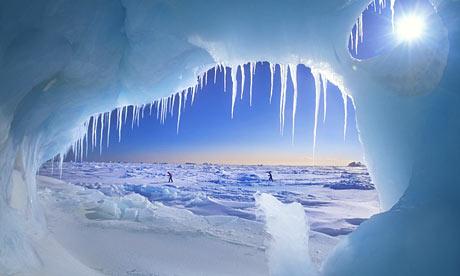 Arctic Manipulation