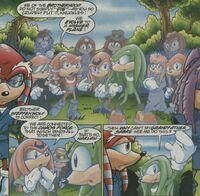 Brotherhood Guardians (Archie Sonic) Next Evolution