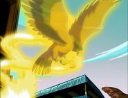 Hawk Avatar