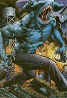 Shark Man DC