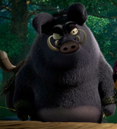 Wong the Warthog