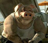 Pigman 5816
